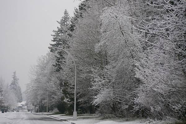 winter 2013 224