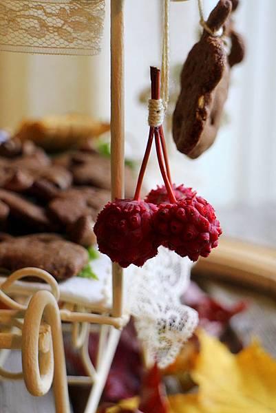 hazelnut cookies-Kousa Dogwood 371