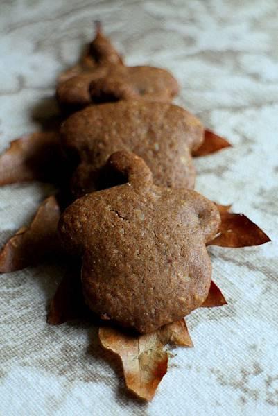 hazelnut cookies 476