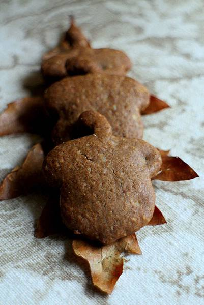 hazelnut cookies 476