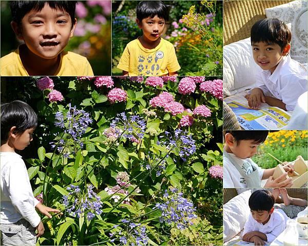 summer garden2