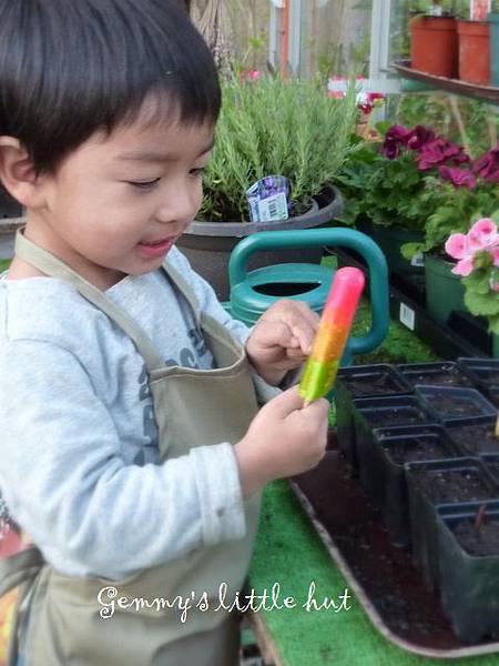 seedling 112.JPG