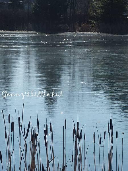 冬景3.jpg