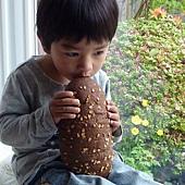 寶寶與麵包2.JPG