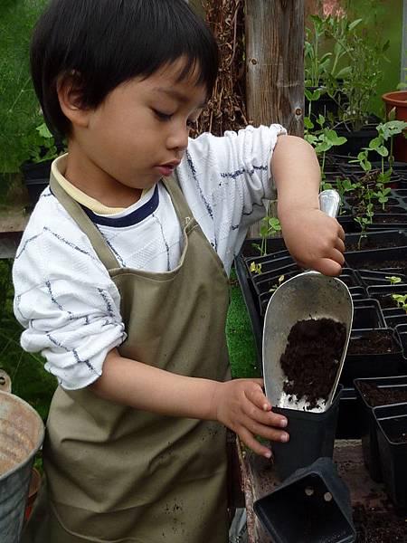 garden & Joshua 229.JPG