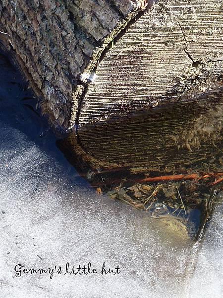 冬景10.jpg