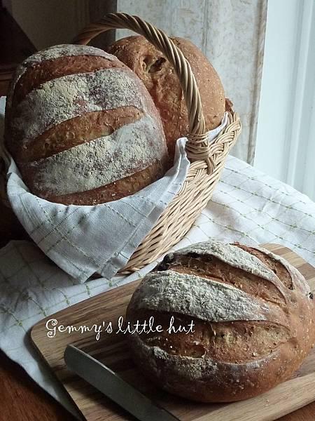 樸實的麵包.jpg