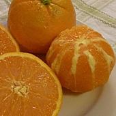 新鮮橙汁醬 2.JPG