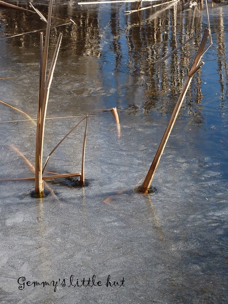 冬景11.jpg