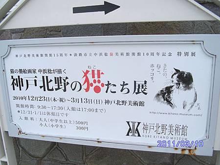 神戶北野貓展.jpg