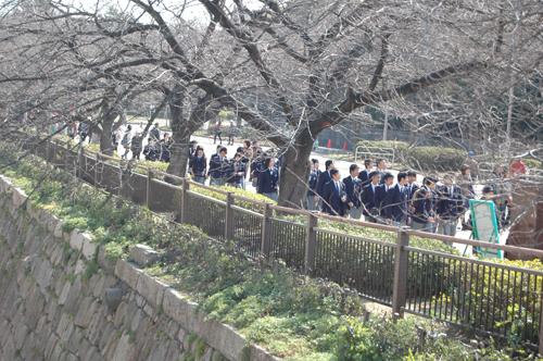 大阪城參觀.jpg