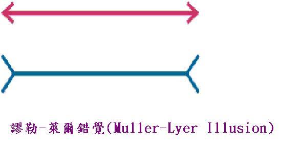 謬勒-萊爾錯覺(Muller-Lyer Illusion).JPG