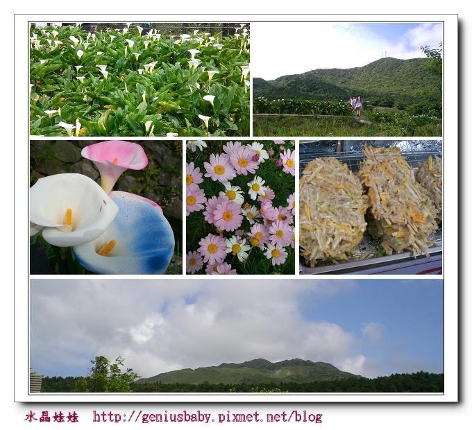 竹子湖980503.jpg