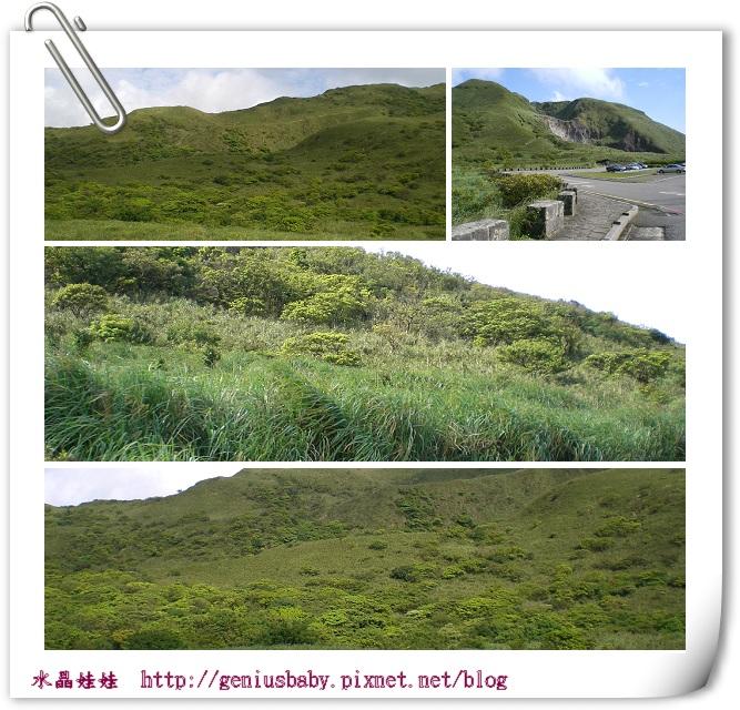 陽明山風景980503.jpg