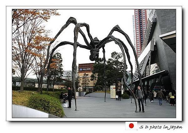 六本木大蜘蛛.jpg