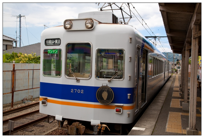 京阪神2010 C5D-225.jpg