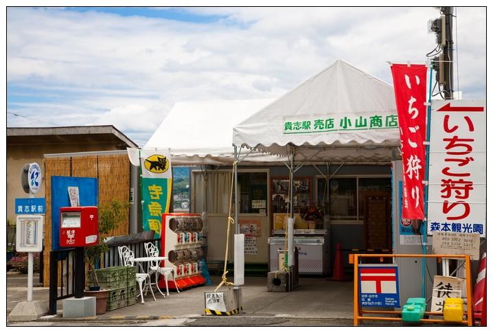 京阪神2010 C5D-238.jpg