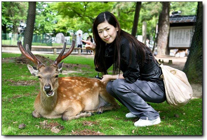 京阪神2010 C5D-161.jpg