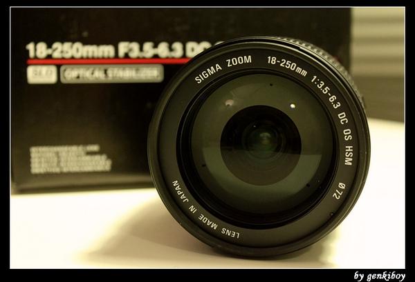 sigma 18-250mm (8).jpg