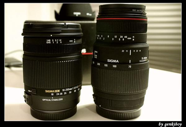 sigma 18-250mm (10).jpg