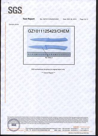 FDA Original Report--Blue_頁面_3.jpg
