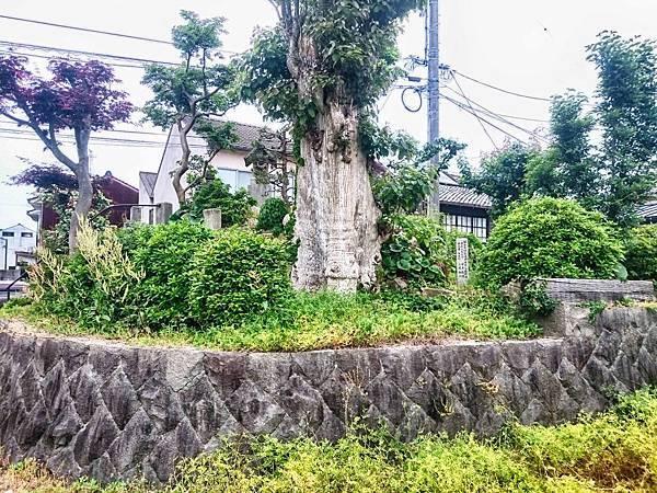 塚山古墳石垣.jpg
