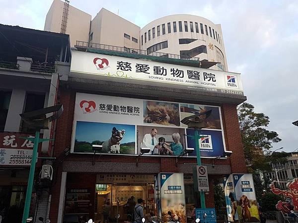 慈愛動物醫院.jpg