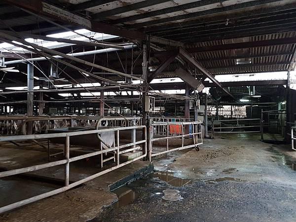 香山牧場農舍.jpg