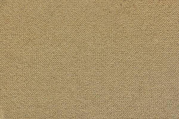 Carpet0034_M[1].jpg