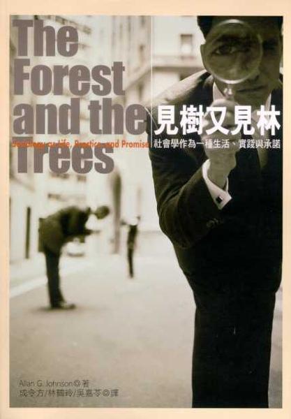 見樹又見林