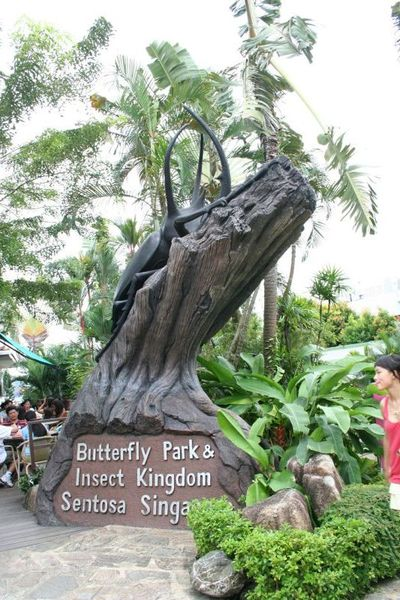 Butterfly & Insect Park