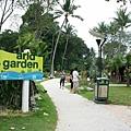 Arid Garden at Palawan Beach