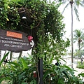 Southernmost point of Asia Continent