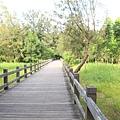 台東森林公園 木棧道