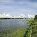 台東森林公園 活水湖