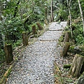 富源國家森林遊樂區蝴蝶谷 - 步道