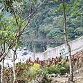 富源國家森林遊樂區蝴蝶谷 - 富源吊橋