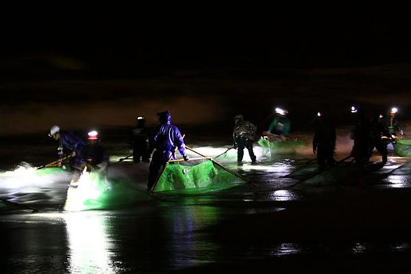 花蓮溪口撈捕鰻魚苗