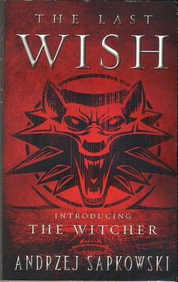 the Witcher novel.jpg