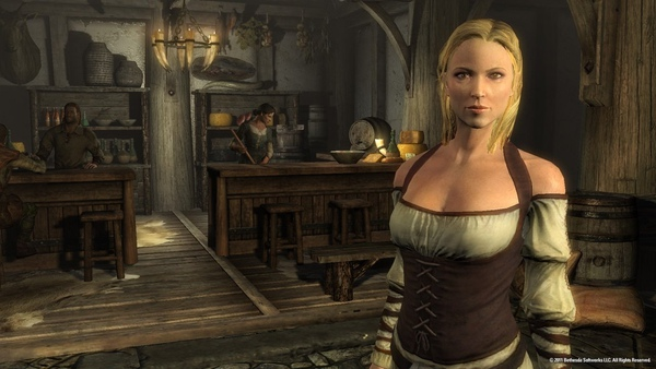 the-elder-scrolls-v-skyrim-busty-wench.jpg