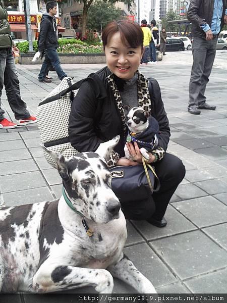 (台北東區)遇見小馬般大隻的狗!我和吉米都怕怕~~