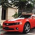camaro RS 大黃蜂 變形金鋼