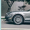 FORD MUSTANG 野馬