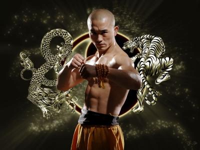 黑心武僧 一龍 在河南電視台武術比賽節目《武林風》戰績取得17戰全勝