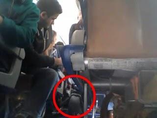 飛機上有企鵝 ,這個場景真實發生,還被拍下來上傳到YouTube。