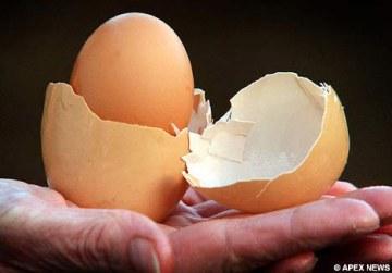 安徽現「蛋包蛋」! 教授:機率不到萬分之一
