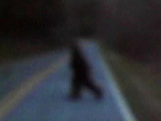 美退伍軍人目擊:大腳怪吼叫過街!