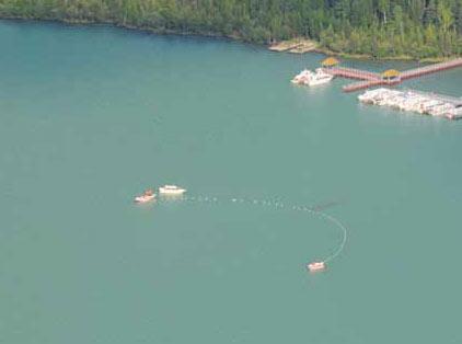 新疆喀納斯湖 湖怪 遊客曾多次目睹「湖怪」長度比遊艇還要長