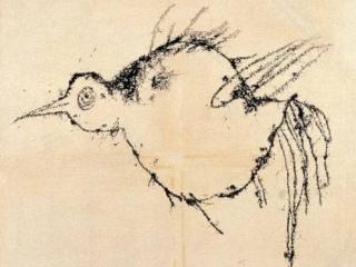 懷孕的蚊子 塗鴉呆鳥 鳥怎麼看都像「懷孕的蚊子」,「難道是我不懂藝術?」