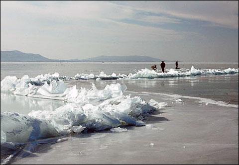 天津 冰凌奇觀 水庫拍攝的冰凌景觀